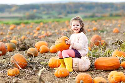 brookline dentist recommends pumpkin